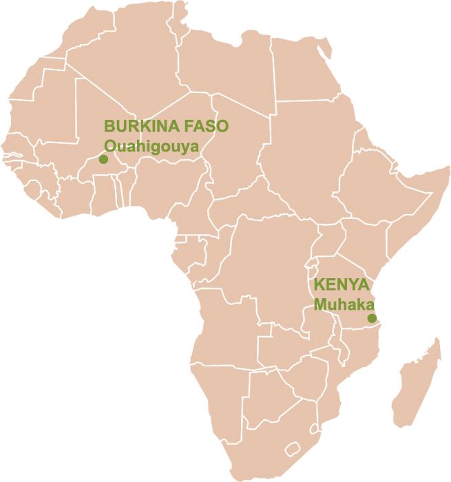 secteur10 in afrika