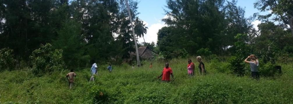 secteur10 kenya