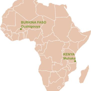 Start spirulinakwekerij in Kenia begin 2016